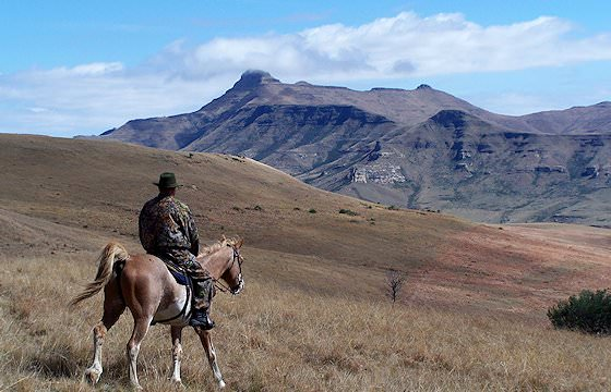 A hunter on horseback in the eastern Free State.