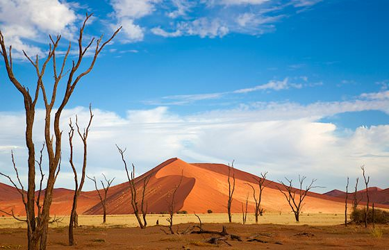 Dramatic scenery at Sossusvlei in Namibia.