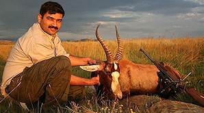 A blesbok hunt in the Free State.