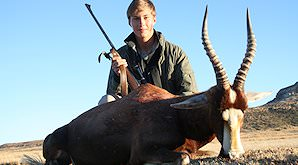Blesbok closely resemble bontebok.