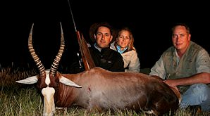A blesbok hunted on a safari in South Africa.