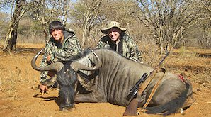 Blue wildebeest can be hunted on a variety of different terrains.