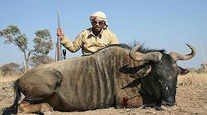 A hunter with his blue wildebeest trophy.