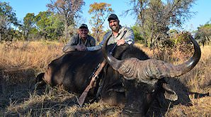 A successufl buffalo hunt in Zimbabwe.