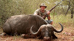 A buffalo hunt in South Africa.