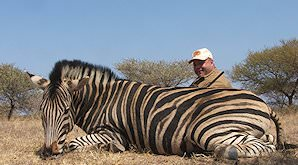 A successful Burchell's zebra hunt.