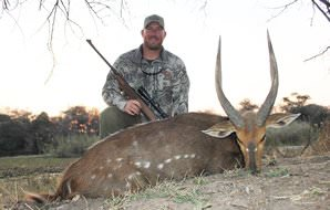 A fine bushbuck trophy hunted in Southern Africa.