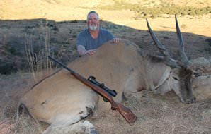 An impressive eland trophy taken on a South African hunting safari.