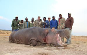 A proud hunting team with a hippo trophy.