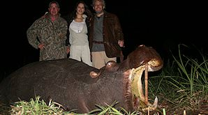 An evening hippo hunt in Zimbabwe.