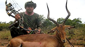Impalas are a regularly hunted throughout southern Africa.