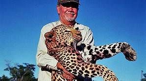 A hunter holds up his leopard trophy for a photo.