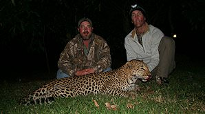 An evening leopard hunt.