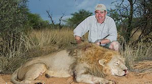 A lion hunt in the Kalahari.