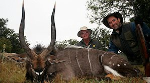 A pair of proud hunters with their nyala trophy.