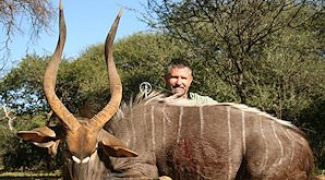 A successful nyala hunt in South Africa.