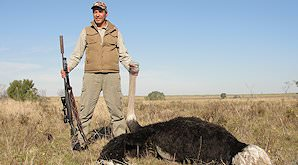 A ostrich is held up for a celebratory hunting photograph.