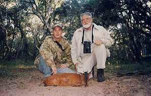 A red duiker hunt in Southern Africa.