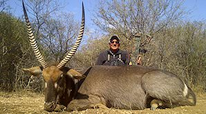 A bow hunter sits behind his impressive waterbuck trophy.