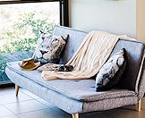 A plush couch with lion-faced throw pillows.