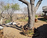 Immerse yourself in the bush in Zimbabwe.