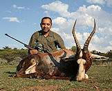 Blesbok are typically hunted in the open spaces of the eastern Free State.