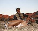 South Africa's national animal, the springbok.