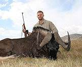 Hunt the black wildebeest in South Africa's Free State province.