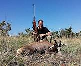A blesbok hunted in South Africa.