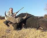 A South African buffalo hunt.