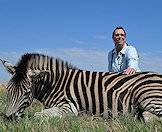 Zebras are ideal for both novice and expert hunters.