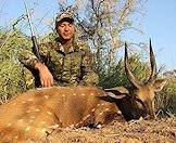 Hunt the spiral-horned bushbuck with ASH Adventures.