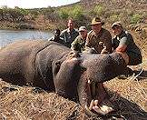 A hippo hunt can be fun for the whole family.