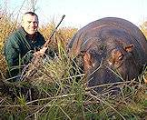 Hippos are best hunted when grazing.