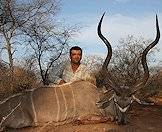 The kudu is included in a number of our hunting packages.