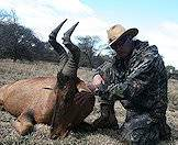A hunter and his red hartebeest trophy.