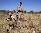 Roan antelope trophies are measured by their horns.