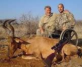 A red hartebeest hunted with assistance.