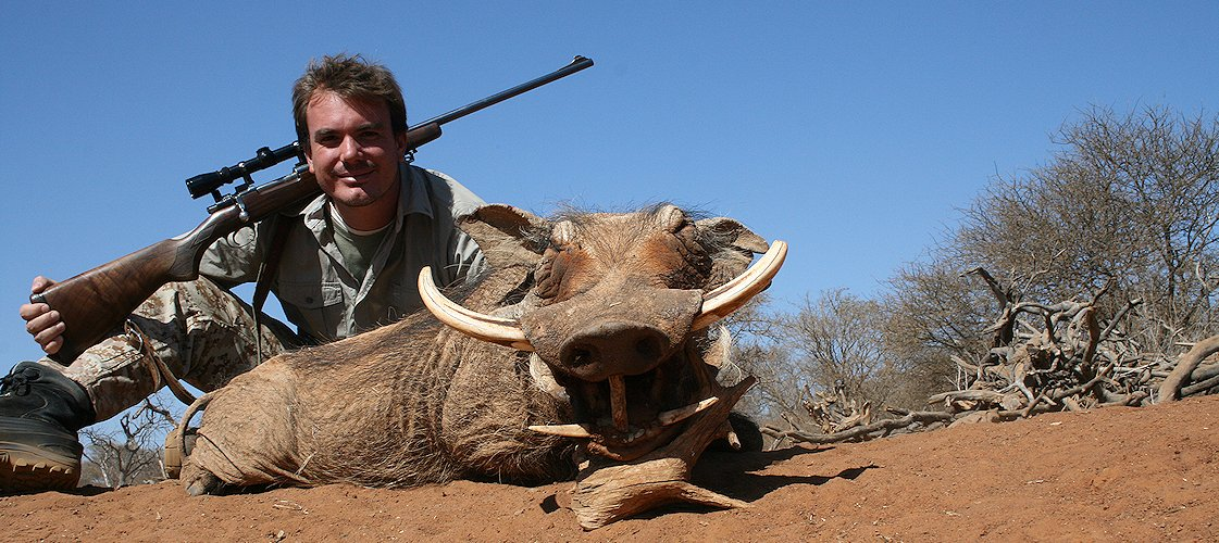 A warthog hunt in South Africa's bushveld region.