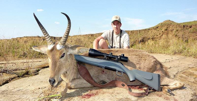 A common reedbuck trophy positioned for a photograph.