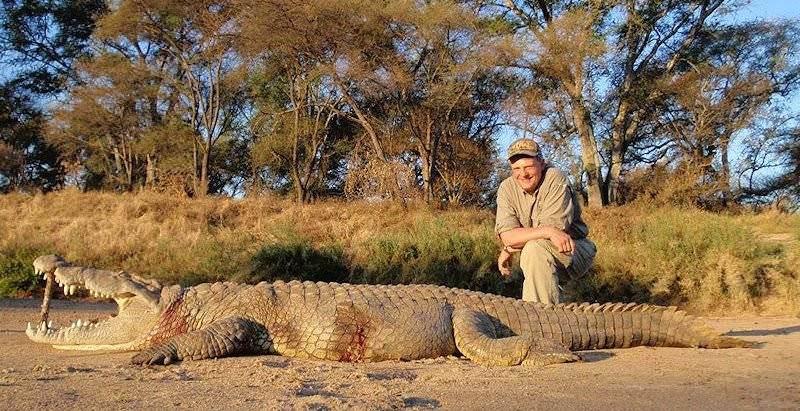 EL REY DE LA SELVA !!!!! Bg_bg_crocodile