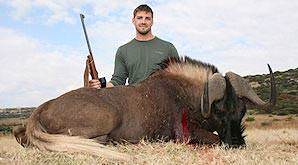 The black wildebeest can only be hunted in South Africa.